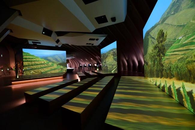 Virtuálna prehliadka vinárstva, ktorú vytvorili pomocou videí a fotiek z vrtuľníka. Vďaka tomu máme príležitosť ponoriť sa do procesu kultivácie viníc kdekoľvek na svete.