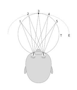 Horopter vnimanie 3D