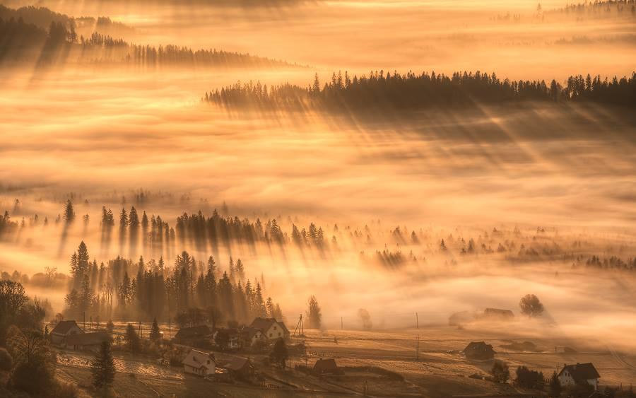 Autor : Robo Kučák Hmla dodáva fotografii neobyčajnú atmosféru.