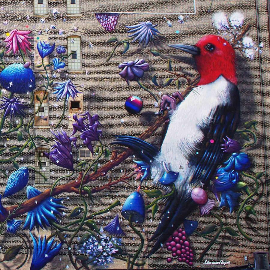 detail vtáka