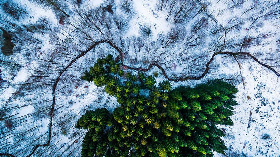1. miesto v kategórii divokej prírody